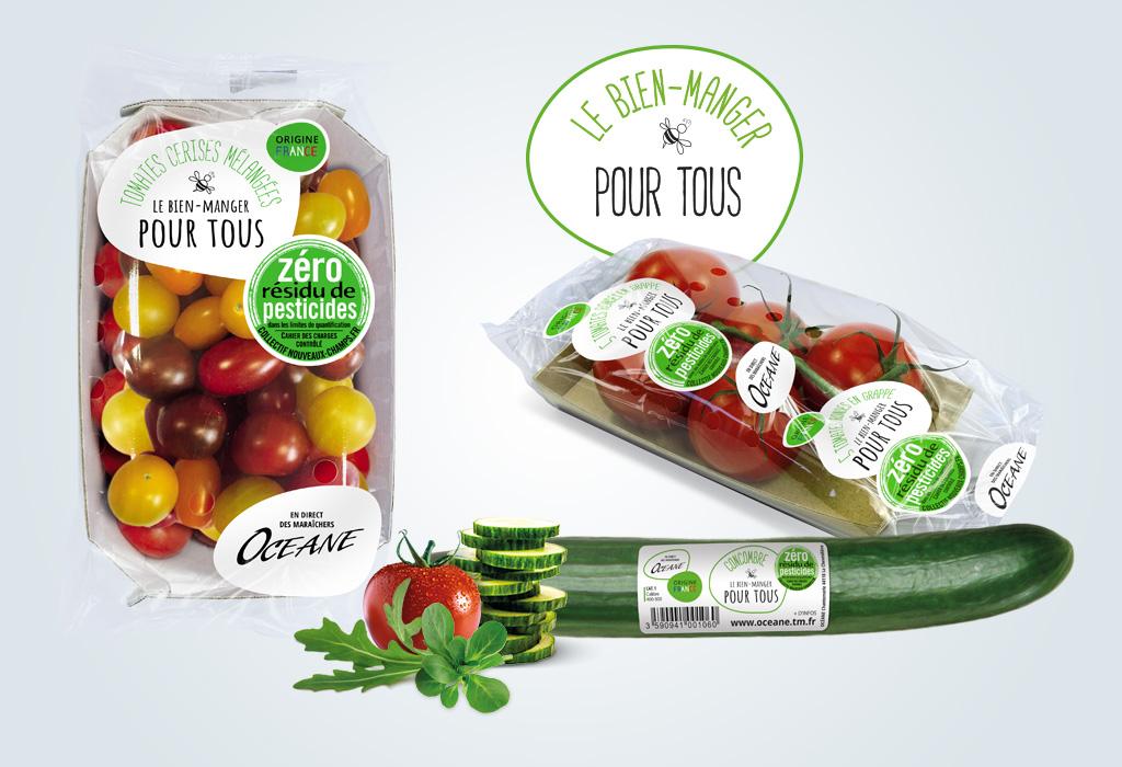Agence de communication A Tribu Le Mans 72 Sarthe Pays-de-la-Loire — Océane maraîcher Nantes packaging barquette tomate, concombre